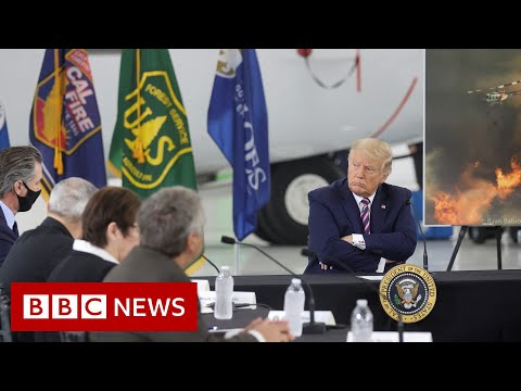 Trump: I don't think science knows about climate - BBC News