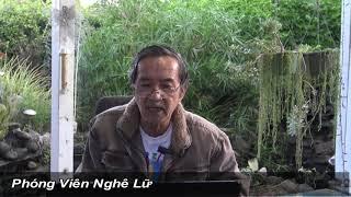 Nàng Dâu Trung Quốc Gởi Thơ Cho Người Việt Trong Nước