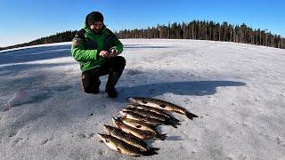 Зимняя рыбалка с ночевкой в апреле. Щука на самоловки. Закрытие сезона.