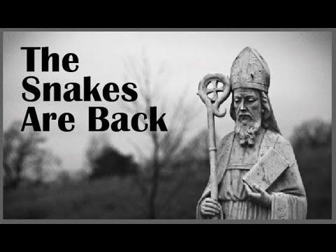 'Catholic' Ireland: THE SNAKES ARE BACK