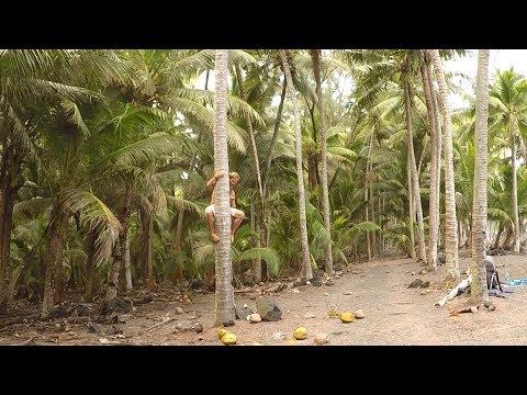 Hawaii Nature School
