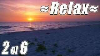 RELAXING NATURE SCENES #2 Sounds of Nature Sleepy Ocean Waves Best Scenic Sunset Beach Sea Birds HD