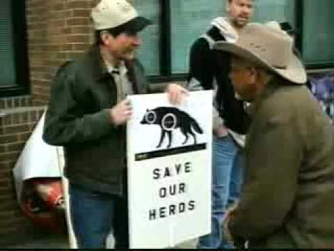 Wolf settlement takes center stage in Missoula
