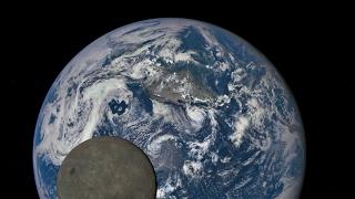 Giornata della Terra - L'Importanza della Scienza #marchforscience | Astrolive 21