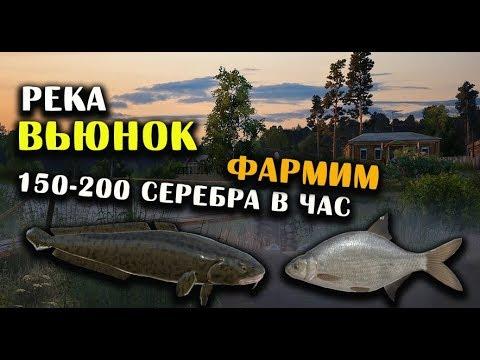РУССКАЯ РЫБАЛКА 4. Фарм серебра на Вьюнке. Лещ, Налим и Подуст на реке Вьюнок.