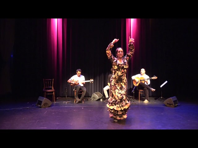 Bridge Ensemble at Theater Ludens with Flamenco and Persian music (2017)