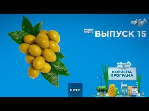 Как выбрать вкусные оливки | ПОЛЕЗНАЯ ПРОГРАММА. Выпуск 15 — 06.02.2020