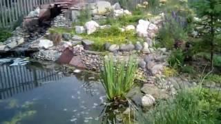 Zapętlaj Альпийская горка. Каменные терассы с растениями. Водопад. | Влог молодой пенсионерки