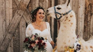 Bride Can't Contain Her Excitement At Llama Wedding Surprise