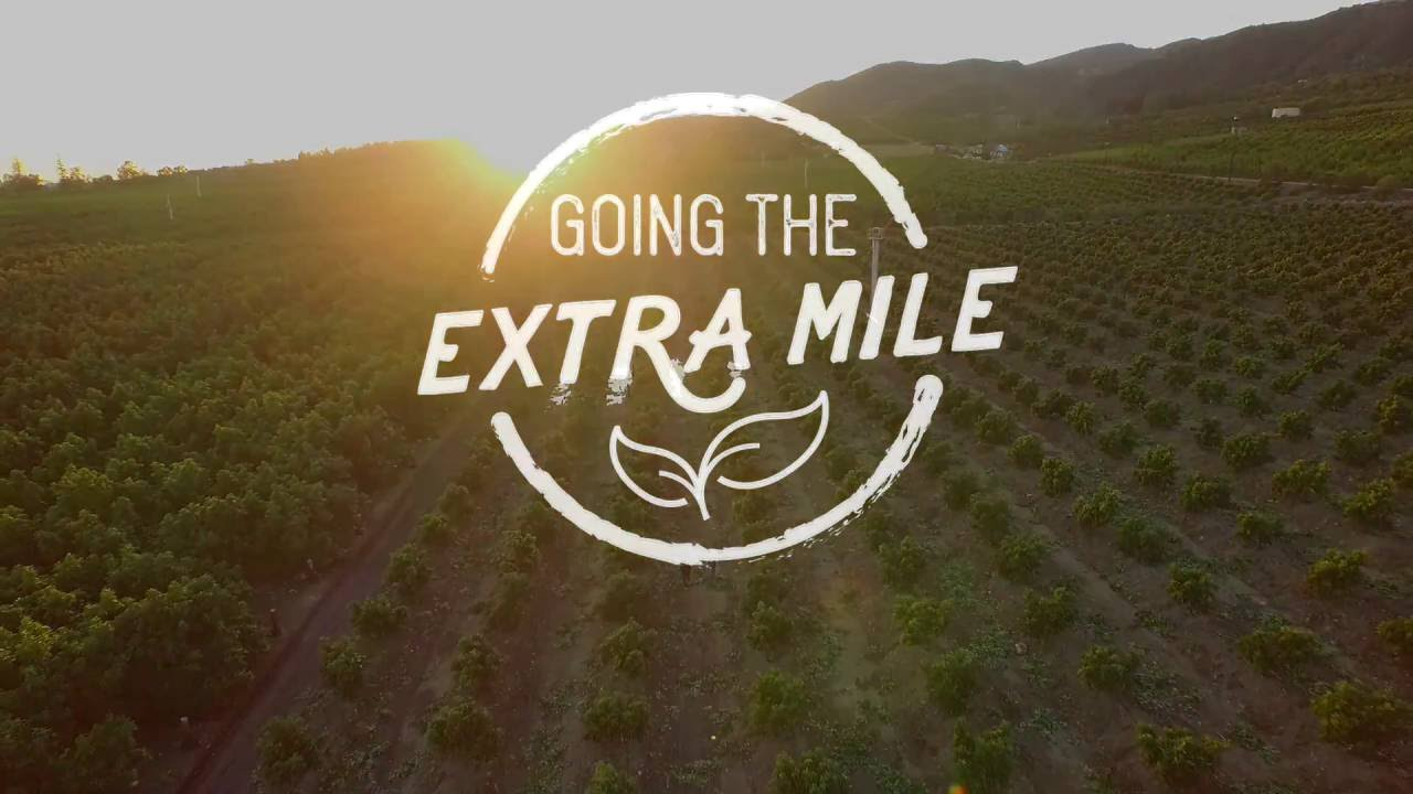 Going the Extra Mile | Making Our Network Better - PRO*ACT USA