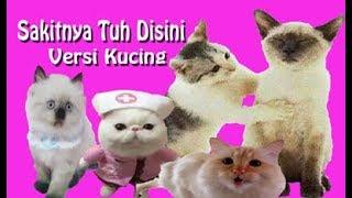 Top Hits -  Cita Citata Sakitnya Tuh Disini Kucing Cover