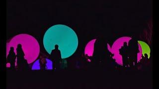 チームラボ 森と湖の光の祭 メッツァビレッジ