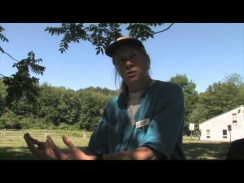 Animal Adventures-Mass Audubon Arcadia Wildlife Sanctuary