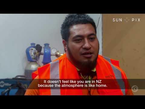 TAGATA PASIFIKA: Tauranga tradies in demand