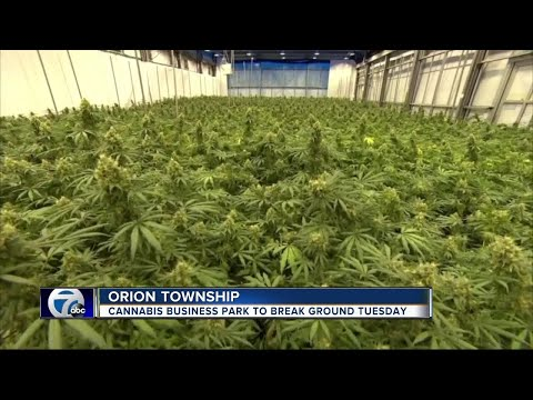 Officials say Orion Township cannabis business park will have big impact on area