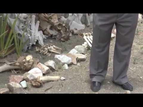Tanzania   Oldupai Gorge   Discovery of Early Man #14   18 Sept '14