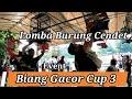 Kontes Burung Cendet Pentet Biang Gacor Cup   Mp3 - Mp4 Download