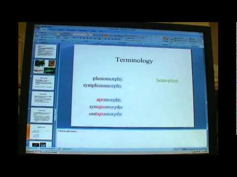 Cladistics (Phylogenetics) Terminology