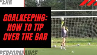 Goalkeeping Training: How to Tip Over the Bar