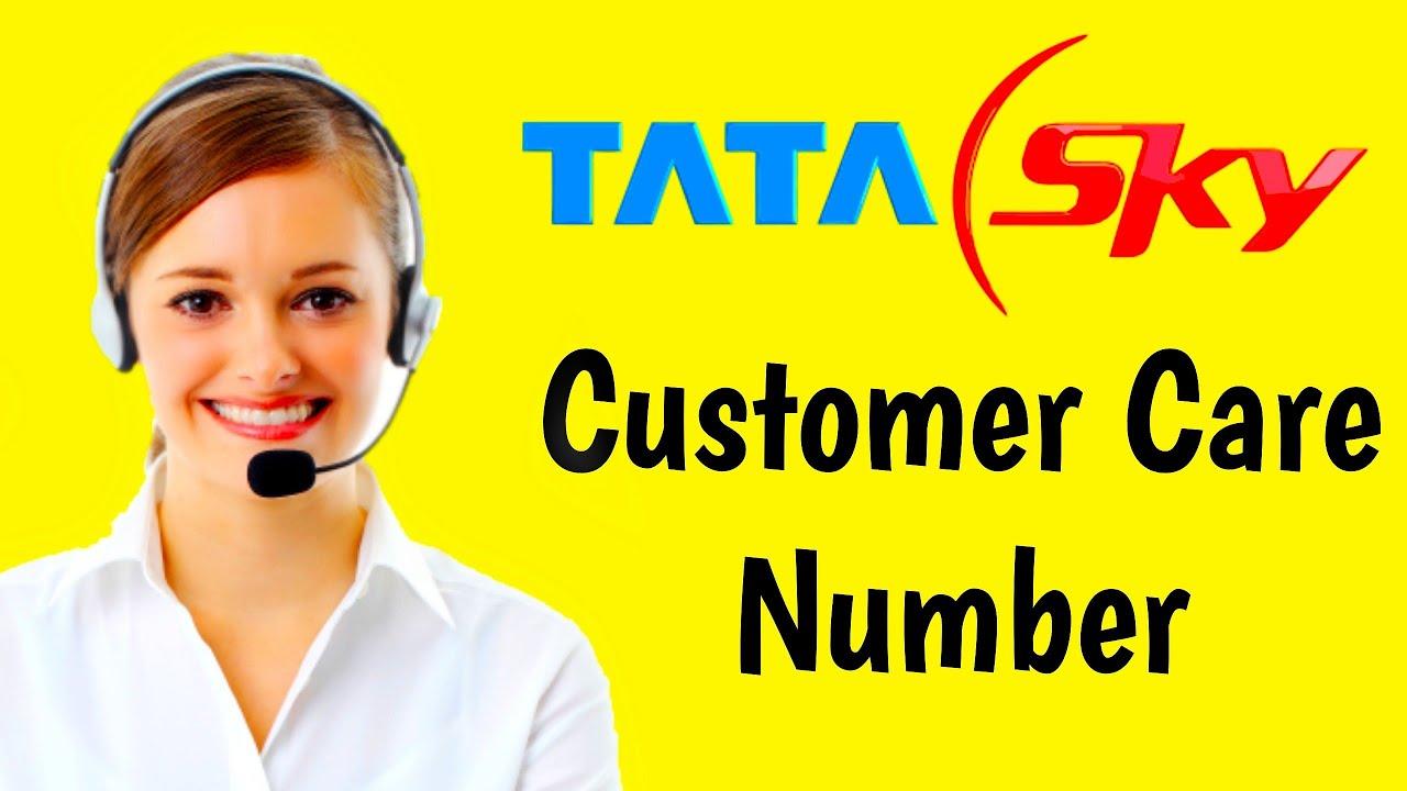 Tata Sky Customer Care Number Tata Sky Toll Free Number Tata Sky Helpline Number Youtube