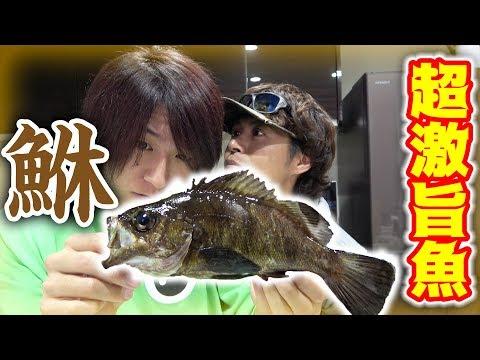 こんなに美味しい魚だったとは!!!