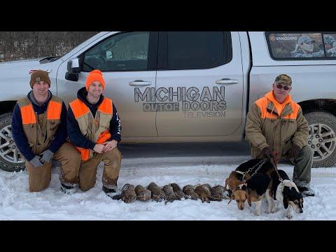 Rabbit Hunting, Perch Fishing, Rabbit Recipe; Michigan Out of Doors TV #2008