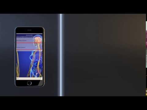 Genius Insight App - Balance On The Go!