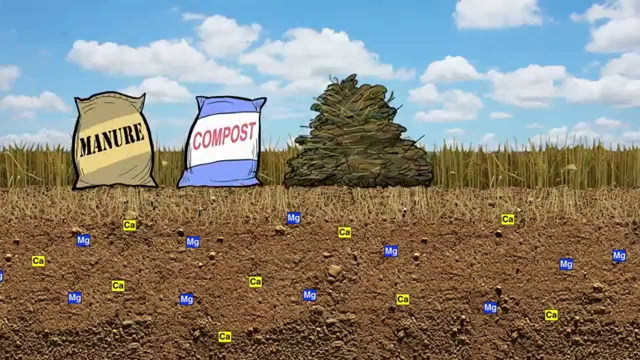 March: Soils Support Agriculture