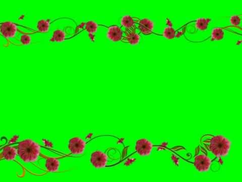 floral frame green screen youtube
