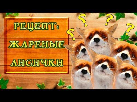 Рецепт жареные лисички без регистрации и смс