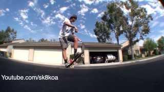 penny board tricks tiger claw old school kickflip ghost kickflip indian burn d