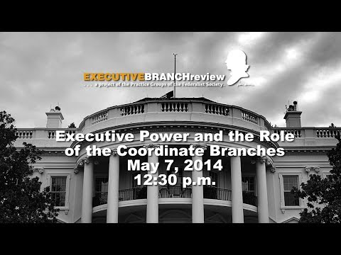 Executive Power and the Role of the Coordinate Branches