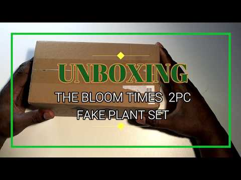 UNBOXING THE BLOOM TIMES BUDGET FAKE PLANT SET