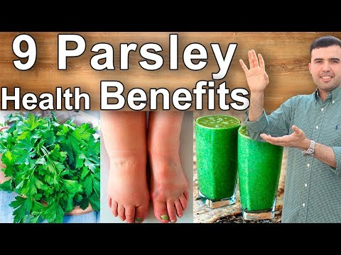 Parsley Uses and Health Benefits Properties, Benefits and Contraindications of Parsley