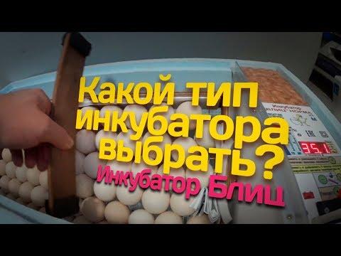 видео: Какой тип инкубатора выбрать? // Инкубатор Блиц // Жизнь в деревне
