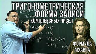 Комплексные числа. Тригонометрическая форма. Формула Муавра | Ботай со мной #040 | Борис Трушин !