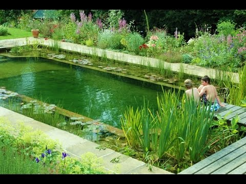 Como hacer piscina natural youtube for Como hacer una piscina natural