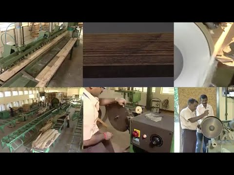 Malabar Neem Wood - Melia Dubia Market in Plywood Industry