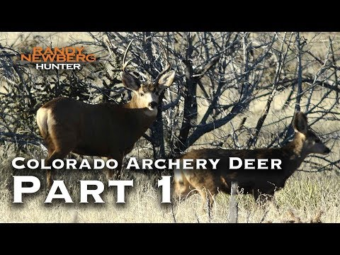 2018 Colorado Archery Deer with Randy Newberg (Part 1)