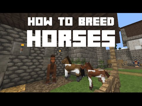 how-to-breed-horses-in-minecraft