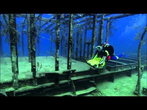 Bahamas - Underwater