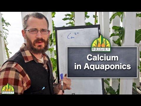 Calcium in Aquaponics Systems
