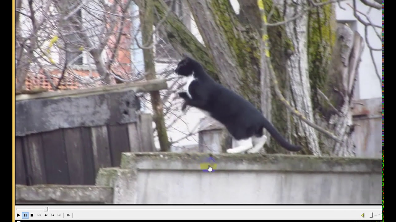 How to view videos Frame by Frame (Media Player Classic) - YouTube