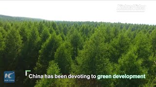 China's green efforts inspire world