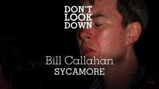 Bill Callahan - Sycamore - Don