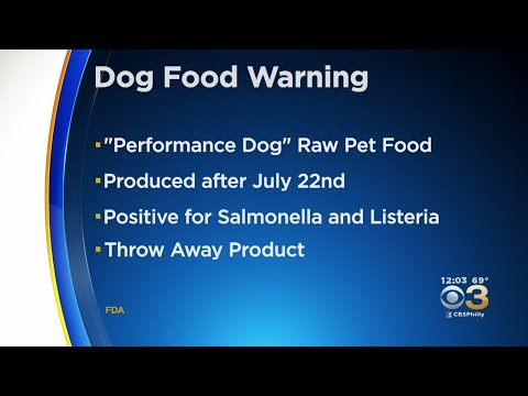 Renee's Adoptable Pet Picks - ICYMI: Dog Food Warning Recalls Performance Dog Raw Food