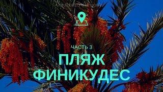 Пляж на набережной Финикудес  (Finikoudes Beach) Try with me: Cyprus!
