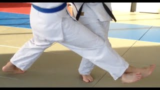 KOUCHI GARI      Judo Inside Leg