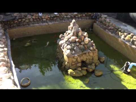 Fish pond cleaning and floating island getaway youtube for Floating fish pond