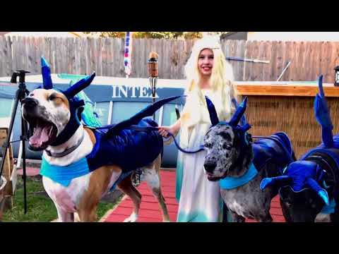 Mother Of Great Dane Dragons - Game Of Thrones Halloween